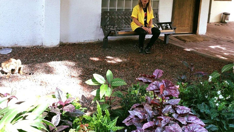 כשעמדנו מרוצים מול הגינה החדשה בפינת ההמתנה שלנו, עלתה לי בראש חווית הטיפול